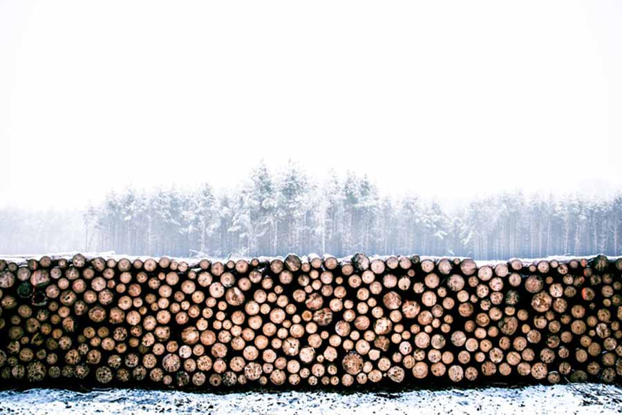 systimber houtbouw bijgebouwen