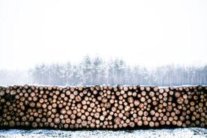 systimber hout uit duurzame bossen